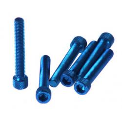 Śruba imbusowa cylindryczna M6 / 45 różne kolory